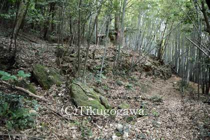 西養寺跡にある石垣