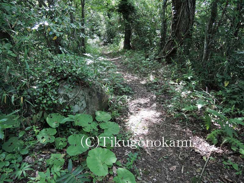 中国自然歩道